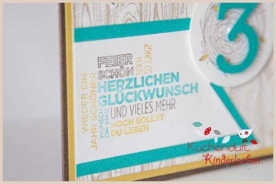 Stampin up_neuhofen_mannheim_geburtstag_kinder_karte_eule_take care_2